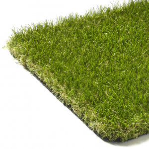 Belvy Grass Palma